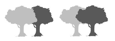 モノトーンの木
