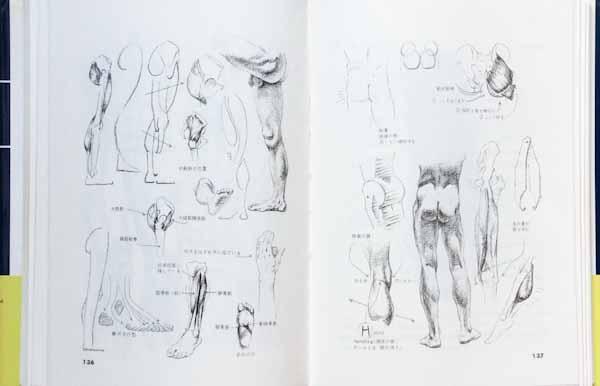 美術解剖図説